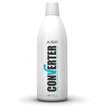 ASP Converter